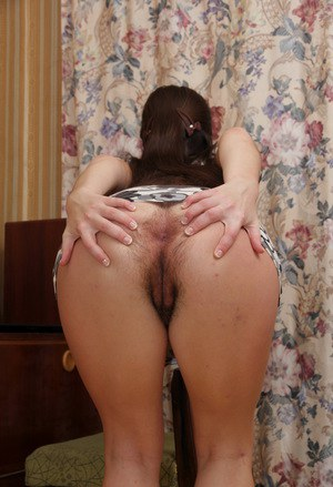 Hairy Anal Gaping Porn